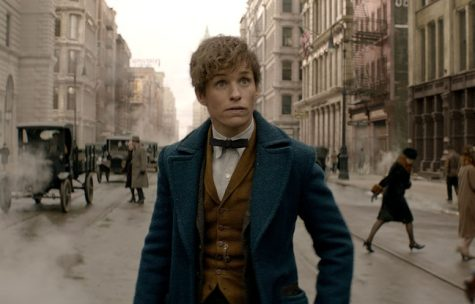 Newt Scamander's arrival in New York