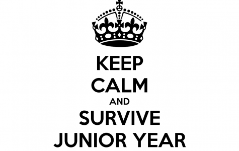 Accomplished: 1st Half Of Junior Year