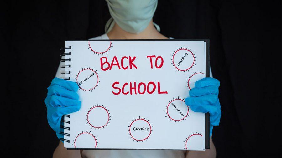 Returning to School!